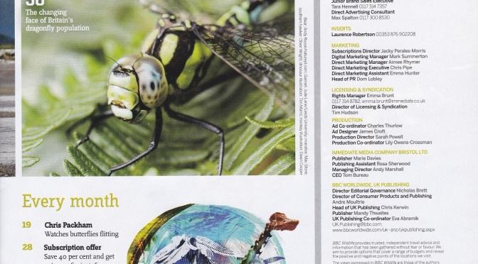 Contributor to the BBC Wildlife Magazine July 2017